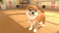 Little,Friends,Dogs,&,Cats,Switch,Microplay