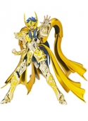 Figura Saint Seiya Aquarius Camus God Cloth Bandai