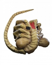 Máscara Alien Facehugger Adulto