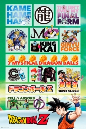 Poster Dragon Ball Z Infographic