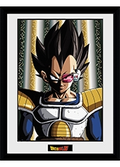 Poster Dragon Ball Z Vegeta Collector Print